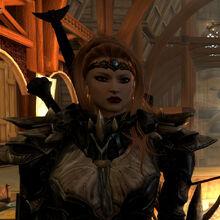 Female Dragon Knight Armor.jpg