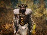 Armor, Attire and Jewelry (Skyrim)