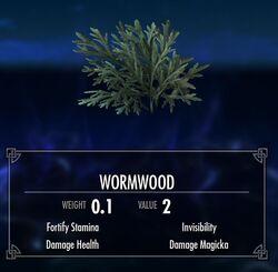 Wiki wormwood.jpg