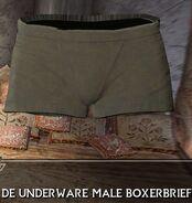 Clean Underwear3