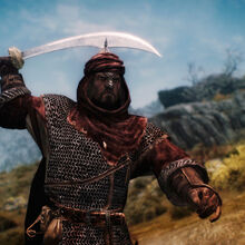 Redguard Knight.jpg
