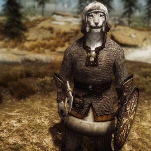 Viking Chainmail Armor.jpg