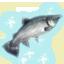 Fishing Trophy salmon.png