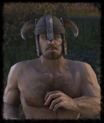 Norgred Hardhelm.png