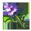 Waterhyacinth.png