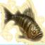 Fishing Trophy perch.png