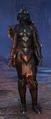 Redguard female dragonknight vet.png