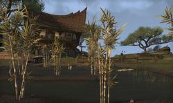 Windcatcher Plantation.png