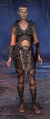 Bosmer female dragonknight nov.png