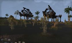 Speckled Shell Plantation.png