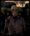 Skeleton (Uldor).png