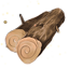 Rough Maple.png