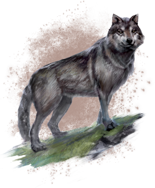Concept art wolf.png
