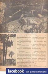 เพชรพระอุมา (2514) 26