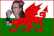 WelshyLogo.jpg