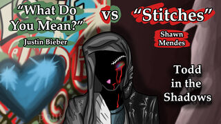 What Do You Mean vs Stitches by krin.jpg