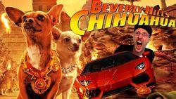 Beverly hills chihuahua nc.jpg