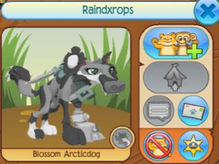 Raindxrops