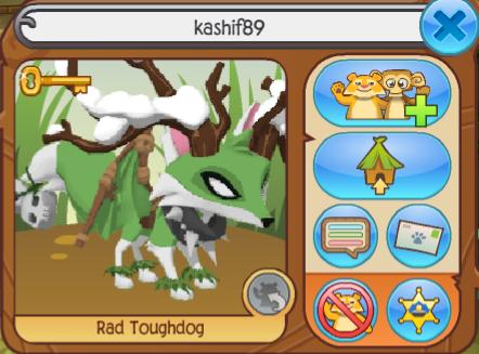 Kashif89