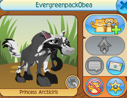 Evergreenpack0bea