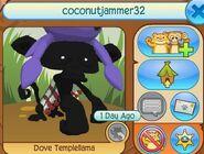 Dreami's AJ user