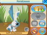 Paradoxxxxx