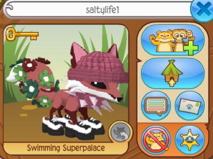 Saltylife1