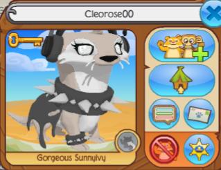 Cleorose00