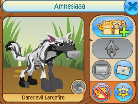 Amnesiaaa
