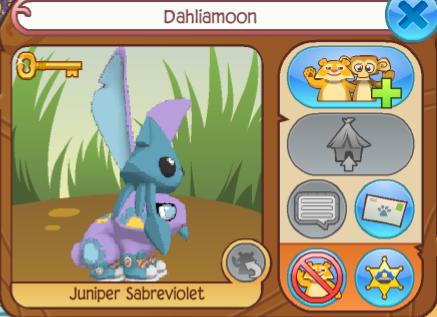 Dahliamoon
