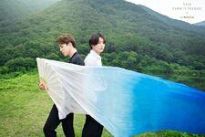 Jimin and Jungkook Summer Package 2019
