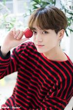 Jungkook Naver x Dispatch Dec 2018 (9)