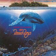 Beach Boys 1992 Summer In Paradise