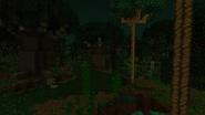 SwamplandRubberTrees