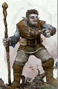 Firbolg - Volo's Guide to Monsters 5e