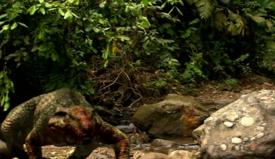 Bloody Allodaposuchus.png
