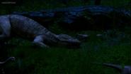 Screenshot (369)