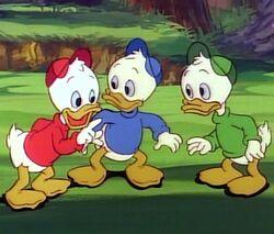 Donald's nephews(2).jpg