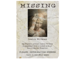 Missing Person Posters