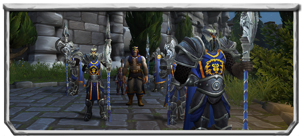 Tfr banner ducal guard.png