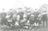 Wolves1893.jpg