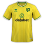 Norwich City 2020-21 home.png