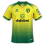 Norwich City 2019-20 home.png