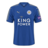 Leicester City 2017-18 home.png