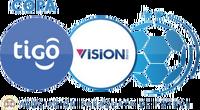 División Profesional de la Asociación Paraguaya de Fútbol