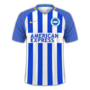 Brighton & Hove Albion 2017-18 home.png