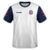 Bolton Wanderers 2019-20 home.png