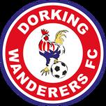 Dorking Wanderers FC.png