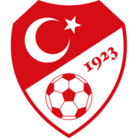 Turkish Football Federation.png