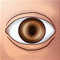 Observe Icon.png